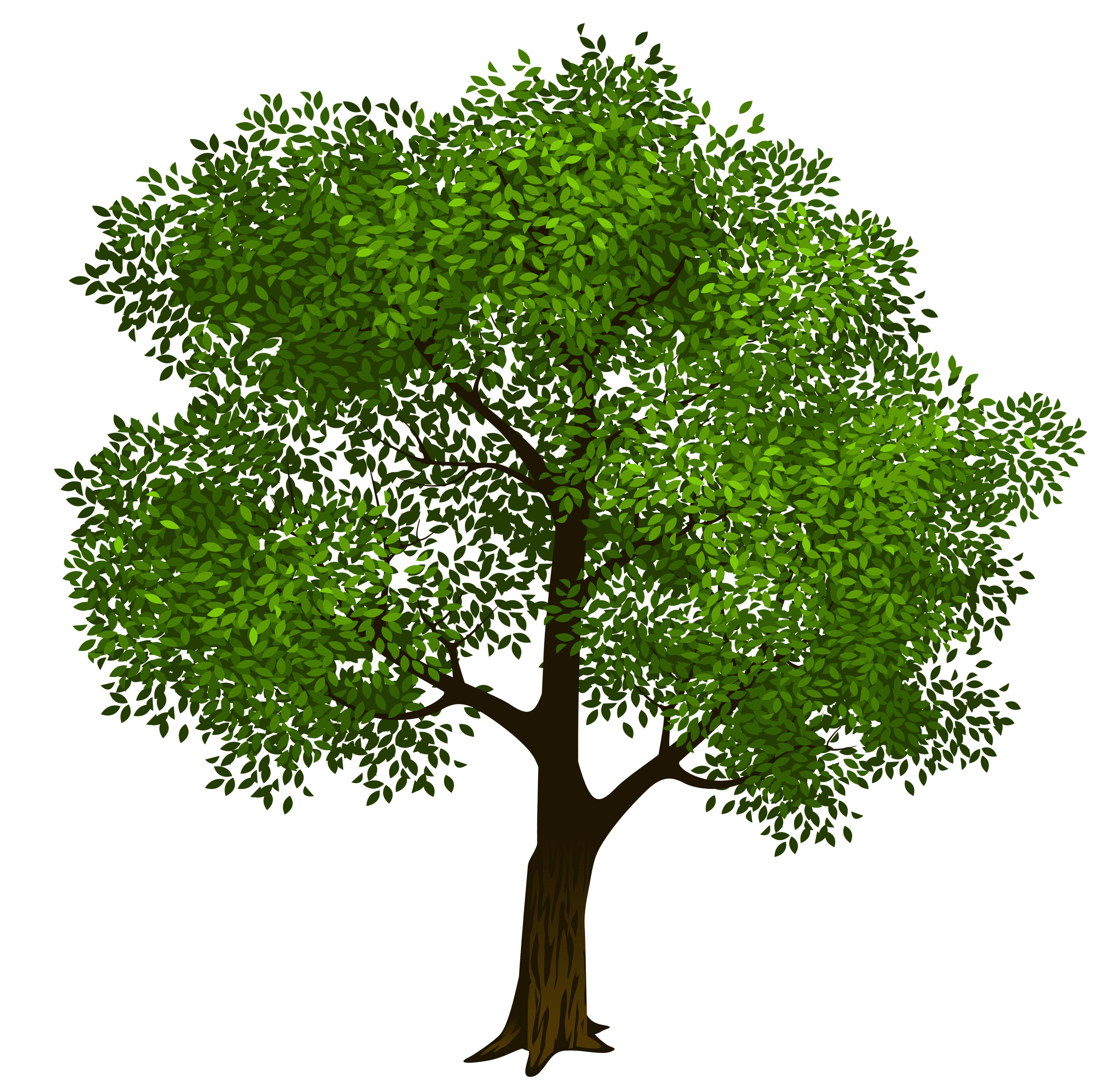 Trees clipart format free download vector stock Transparent Green Tree Clipart Picture | Gallery ... vector stock