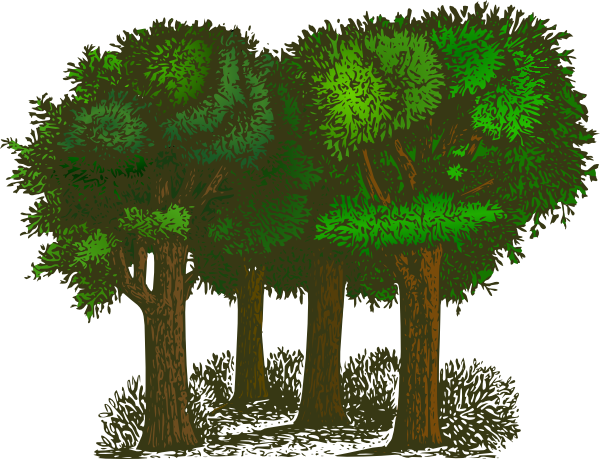 Trees cliparts svg freeuse library Rainforest Plants And Trees Clipart - Clipart Kid svg freeuse library