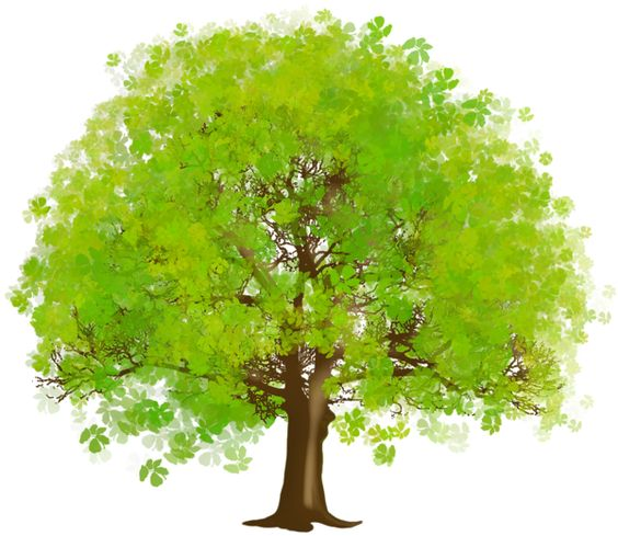 Trees cliparts image freeuse Trees Clipart & Trees Clip Art Images - ClipartALL.com image freeuse
