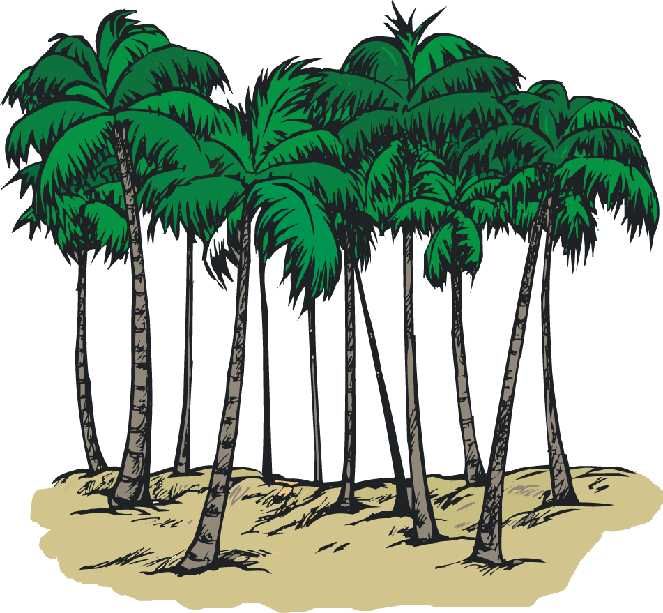 Trees cliparts png library stock Picture Of Palmetto Tree   Free Download Clip Art   Free Clip Art ... png library stock