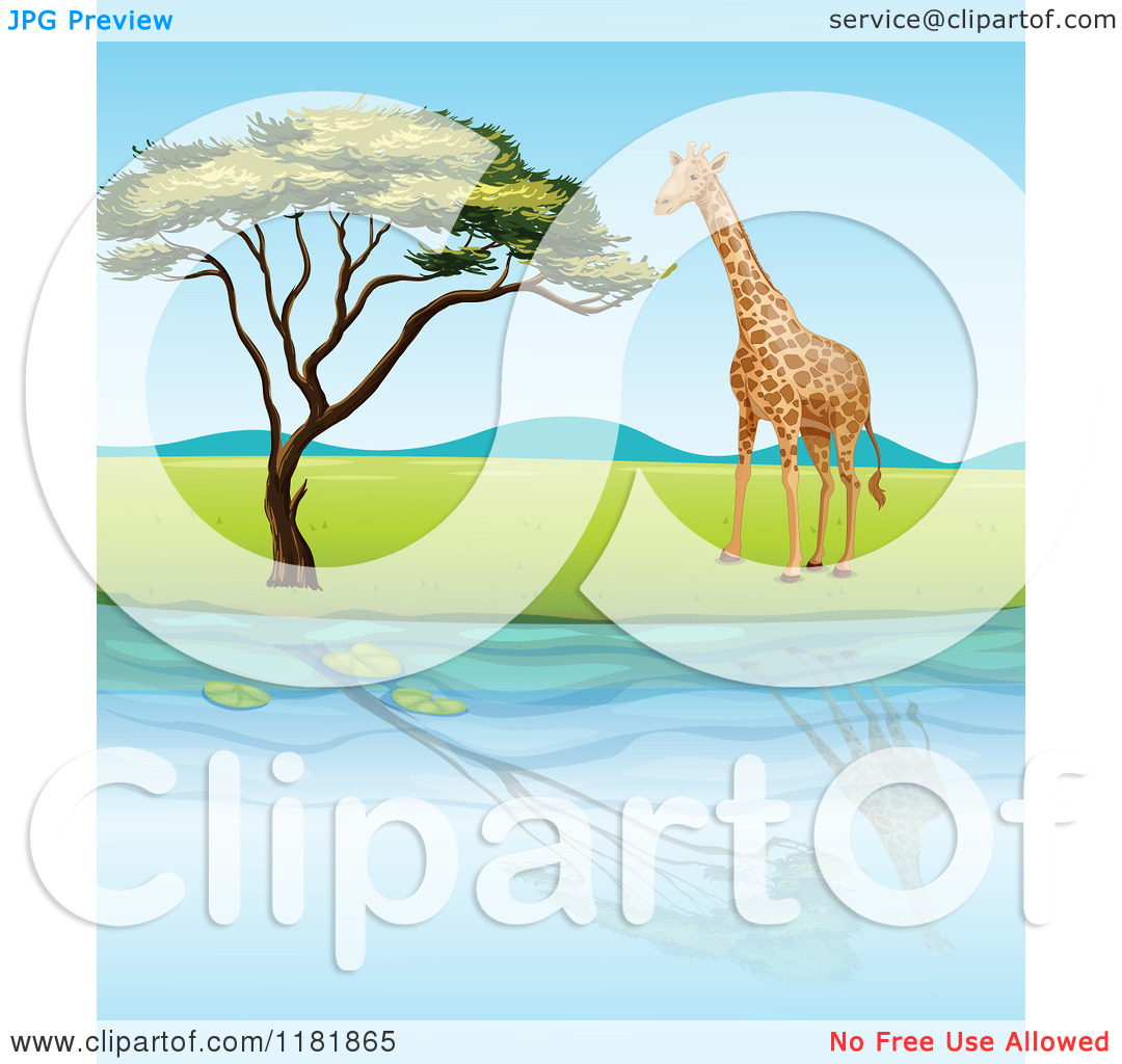 Trees water clipart jpg picture black and white library Cartoon of a Giraffe and Tree Reflecting on Water - Royalty Free ... picture black and white library