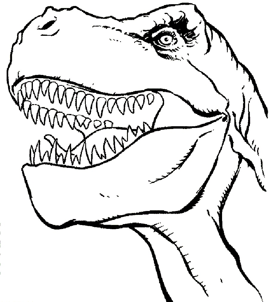 Trex face clipart black and white png free download Dinosaur Face Clipart Black And White png free download
