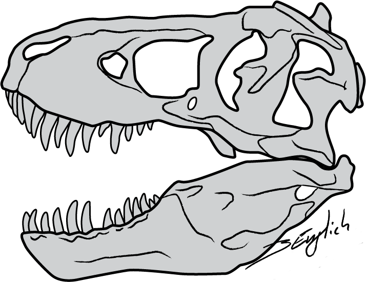 Trex face clipart black and white png library stock HD Clip Black And White Clipart Face T Rex Free For Download ... png library stock