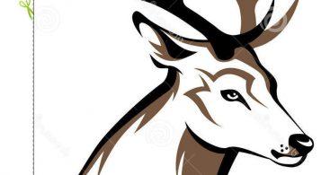 Tribal Deer Skull Decals Vector Archives - Free Vector Art ... image free