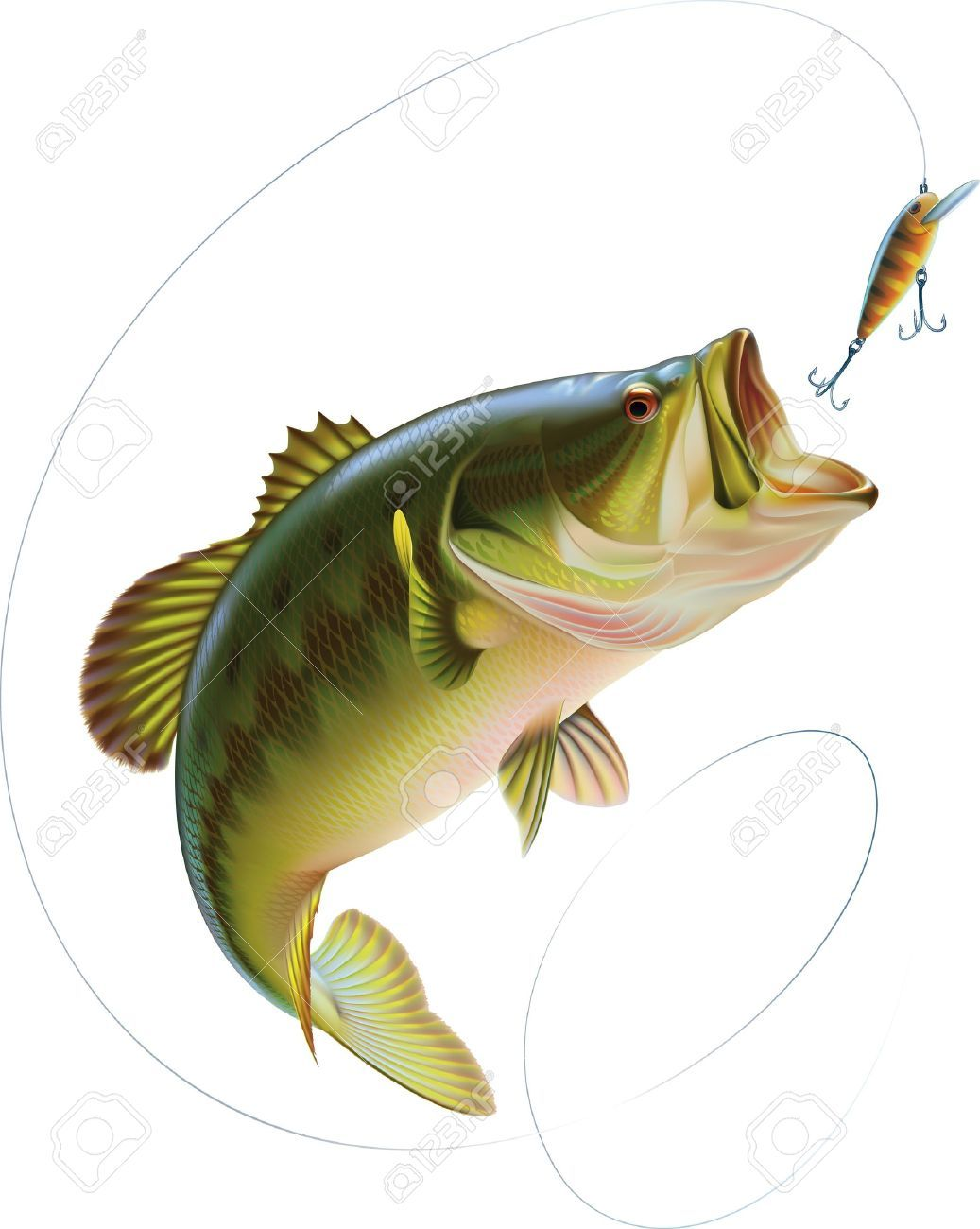 Bass Jumping Out of Water Clipart (65+) | Fish in 2019 ... png royalty free stock