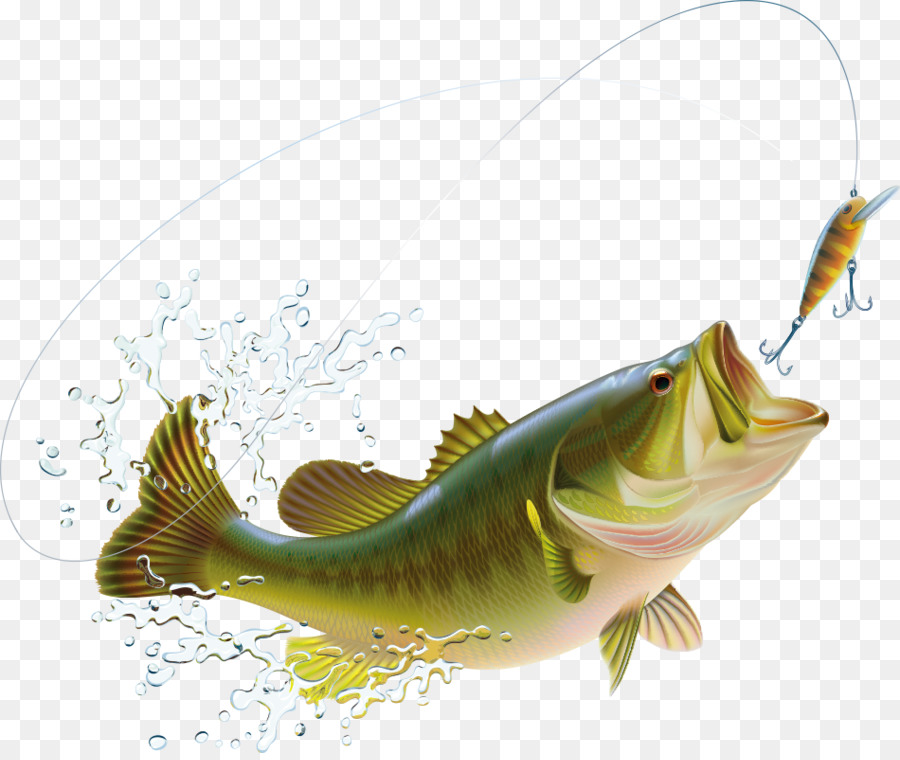Fishing Cartoon png download - 950*795 - Free Transparent ... black and white download