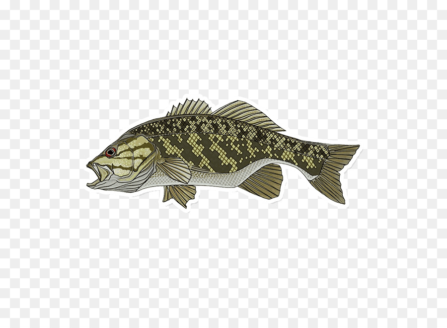 Trophy fish bass clipart transparent clip art free download Fishing Cartoon png download - 650*650 - Free Transparent ... clip art free download