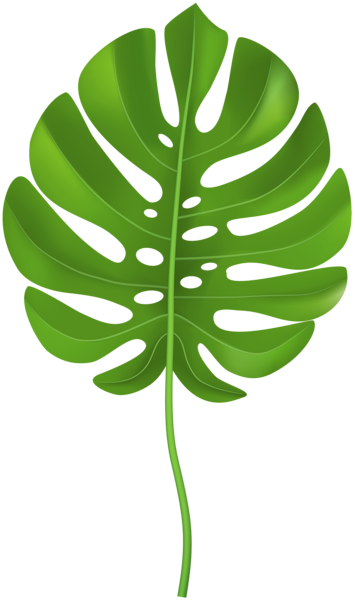 Tropical baby clipart svg freeuse Pin By Kaitlyn Sutphin On Jungle Baby Shower Tropical Leaves ... svg freeuse