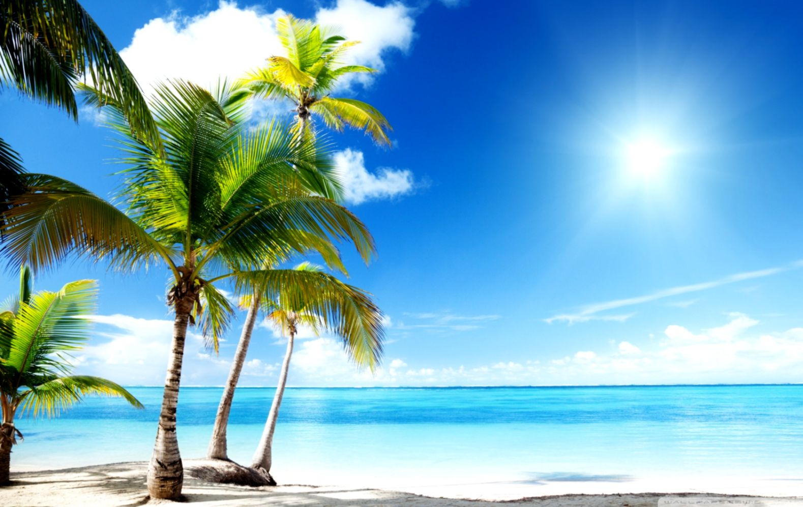 Free Tropical Beach Wallpapers Desktop | Decor di Design free