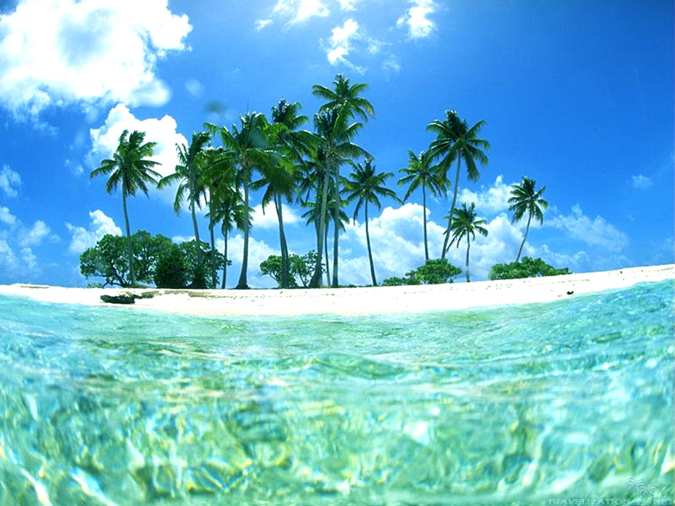 Tropical Beach Backgrounds - Wallpaper Cave | Tropical in ... picture royalty free library