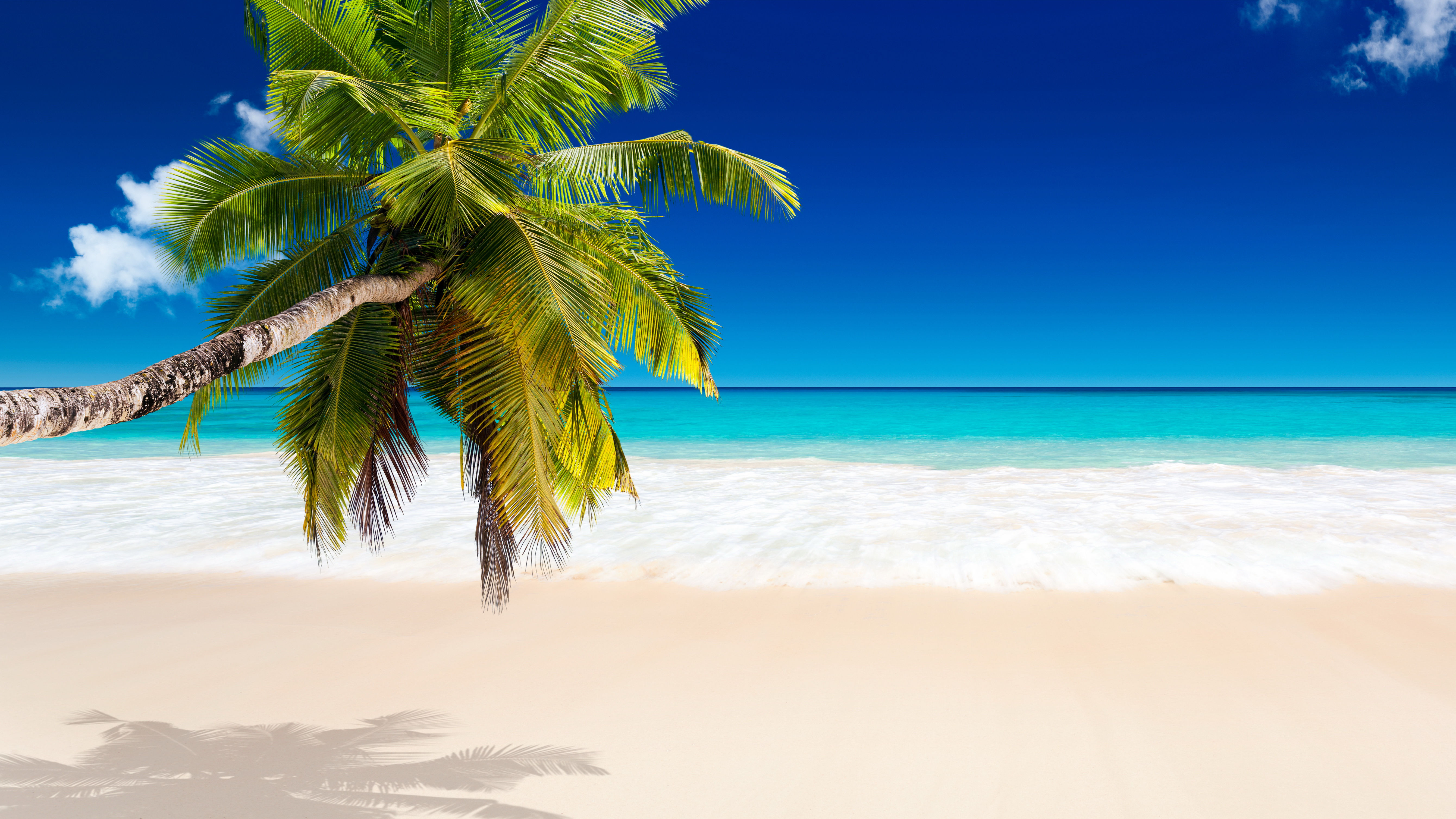 Tropical Beach Wallpapers, Pictures, Images png freeuse library