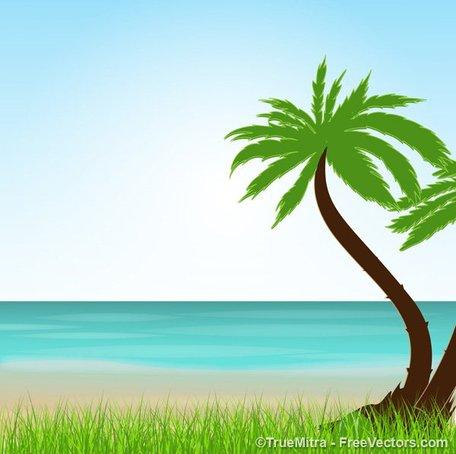 Tropical beach free vectors clipart me - Cliparting.com transparent download
