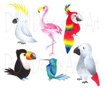 Tropical bird clipart svg black and white Watercolor birds clipart, Tropical bird clipart, Watercolor bird svg black and white