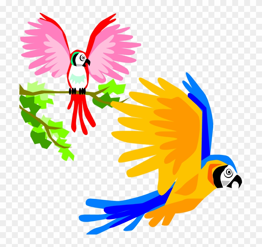 Tropical bird clipart banner library Parrot Clipart Tropical - Colorful Birds Flying Clipart ... banner library