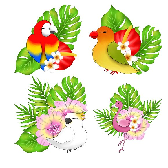 Tropical bird clipart svg library download Tropical birds clipart svg library download