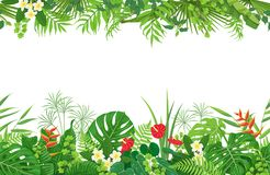 Tropical border clipart image free stock Tropical border clipart 1 » Clipart Station image free stock