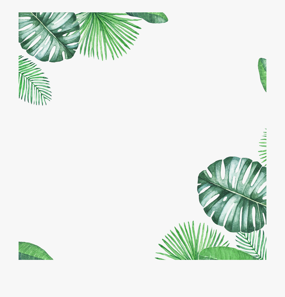 Tropical border clipart png freeuse Green Border Leaf Texture Fresh Free Clipart Hd - Tropical ... png freeuse