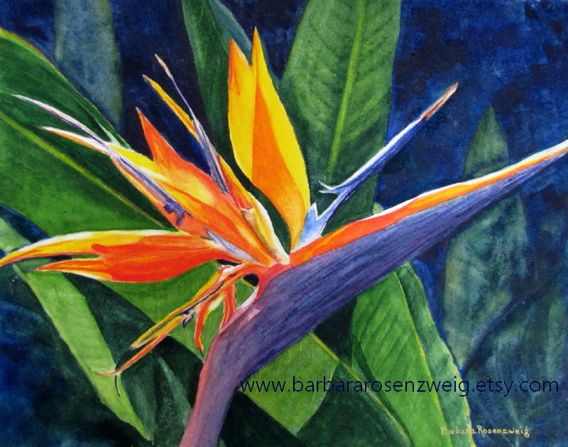 Tropical flower artwork graphic freeuse Tropical Flower Print Bird of Paradise Exotic Flower graphic freeuse