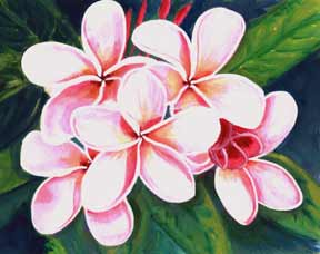 Tropical flower artwork png library stock Hawaii Plumeria flowers Art Paintings for sale   Hawaiian Plumeria ... png library stock