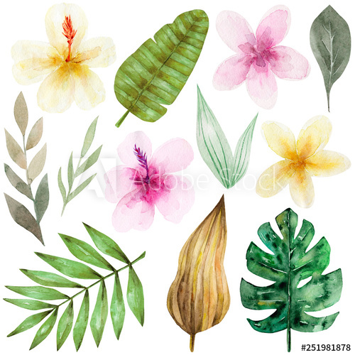 Tropical flowers palm leaves clipart image transparent download Set of tropical flowers and green palm leaves. Exotic and ... image transparent download