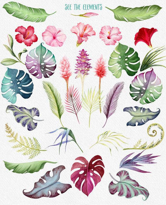 Tropical flowers palm leaves clipart svg transparent download Watercolour flowers, Hawaii clipart, Tropical flowers ... svg transparent download