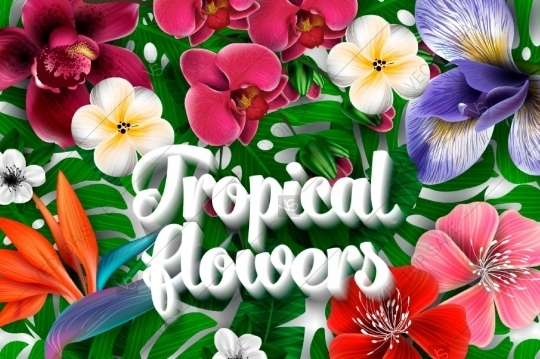 Tropical flowers palm leaves clipart svg free download Tropical flower and palm leaves 3d vector clip art - Anemone ... svg free download