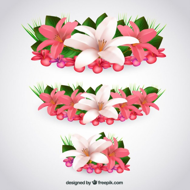 Tropical flowers pictures free jpg transparent Tropical flowers in realistic style Vector | Free Download jpg transparent