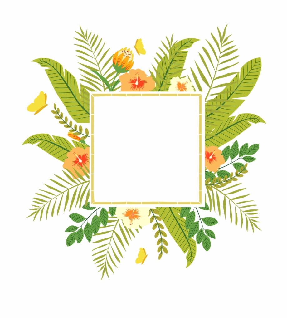 Tropical frame clipart free vector download Tropical Frame Free Png - Tropical Plant Clip Art ... vector download