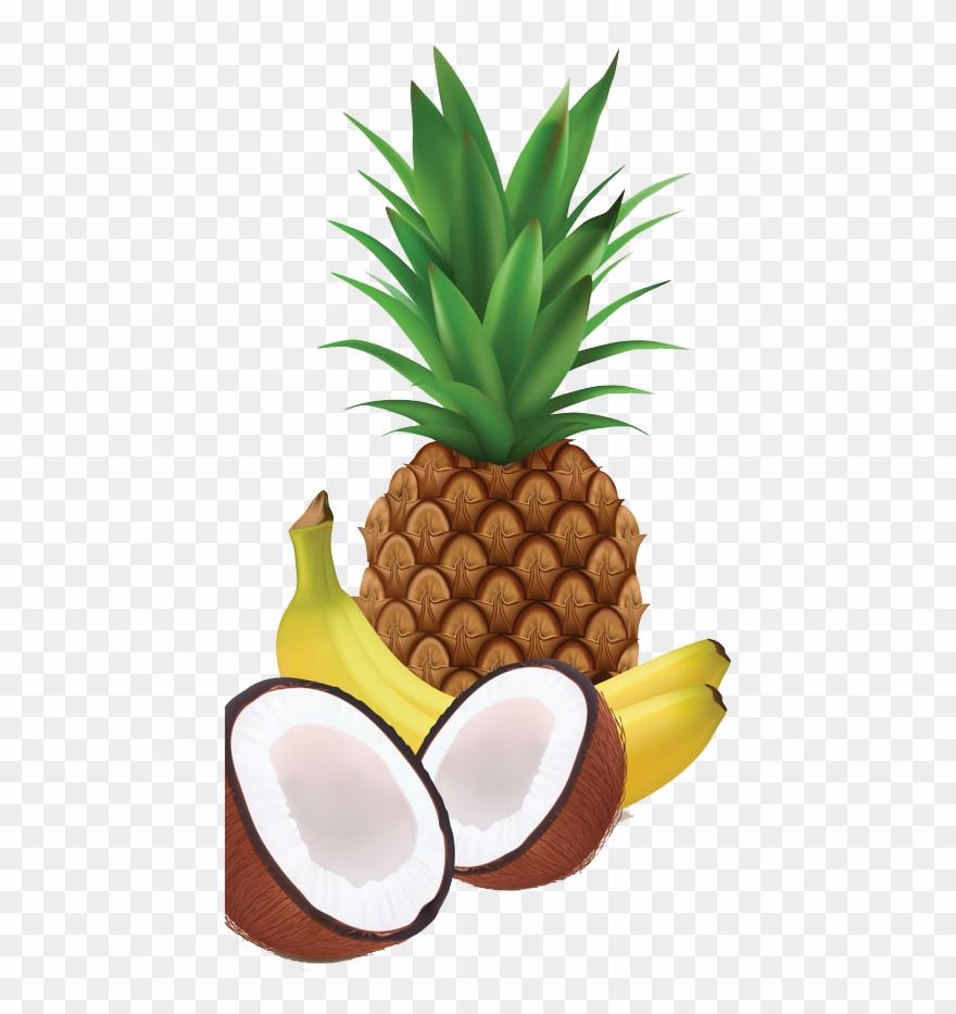 Tropical fruit border clipart free banner transparent download Juice Milkshake Coconut - Tropical Fruit Vector Png Clipart ... banner transparent download