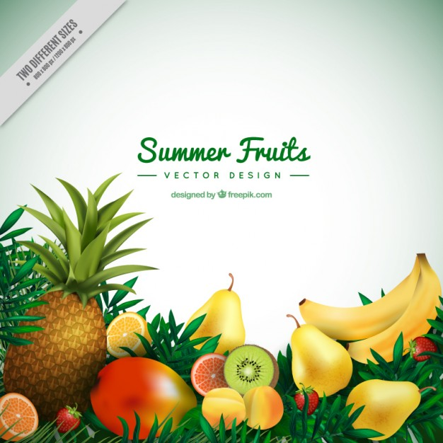 Tropical fruit border clipart free png royalty free stock Summer tropical fruits background Vector | Free Download png royalty free stock