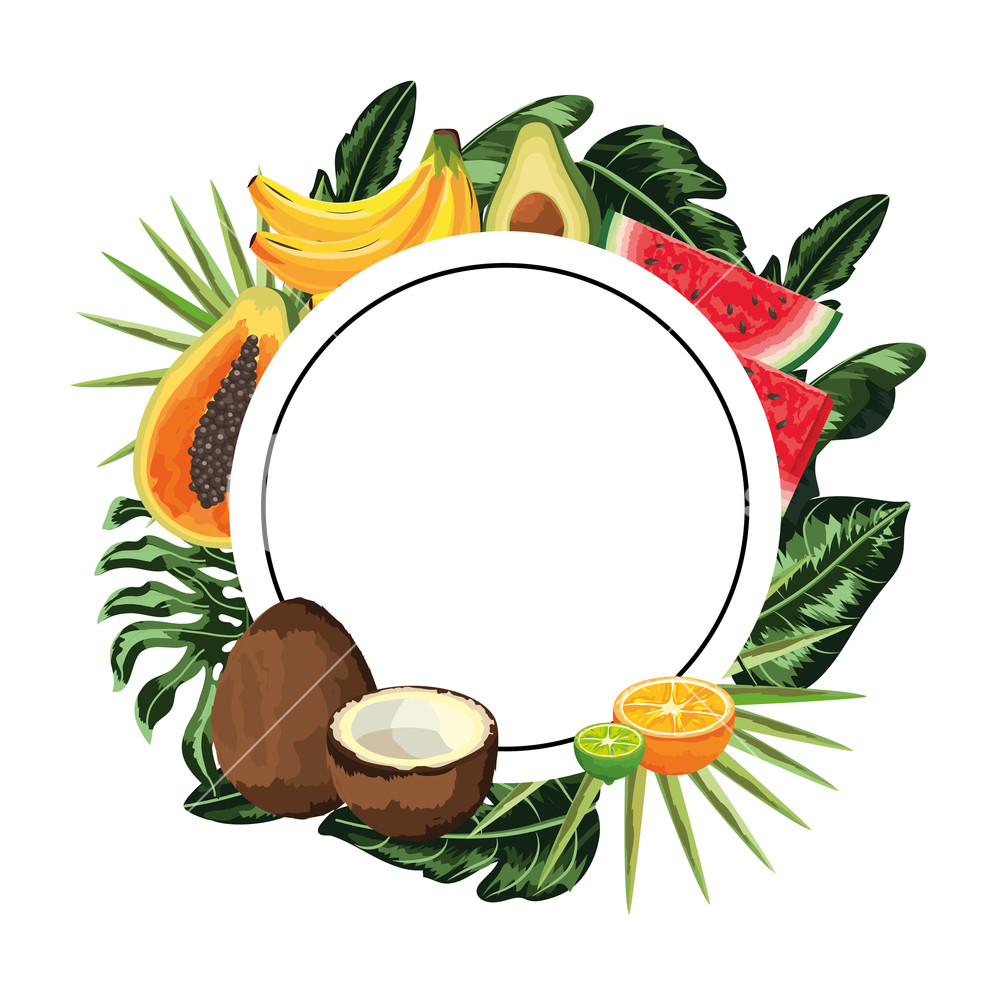Tropical fruit border clipart free banner royalty free stock tropical fruit round icon cartoon vector illustration ... banner royalty free stock