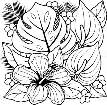 Tropical garden clipart for coloring jpg freeuse download Breathtaking Coloring Pages Hawaiian Flowers Exotic Flower ... jpg freeuse download
