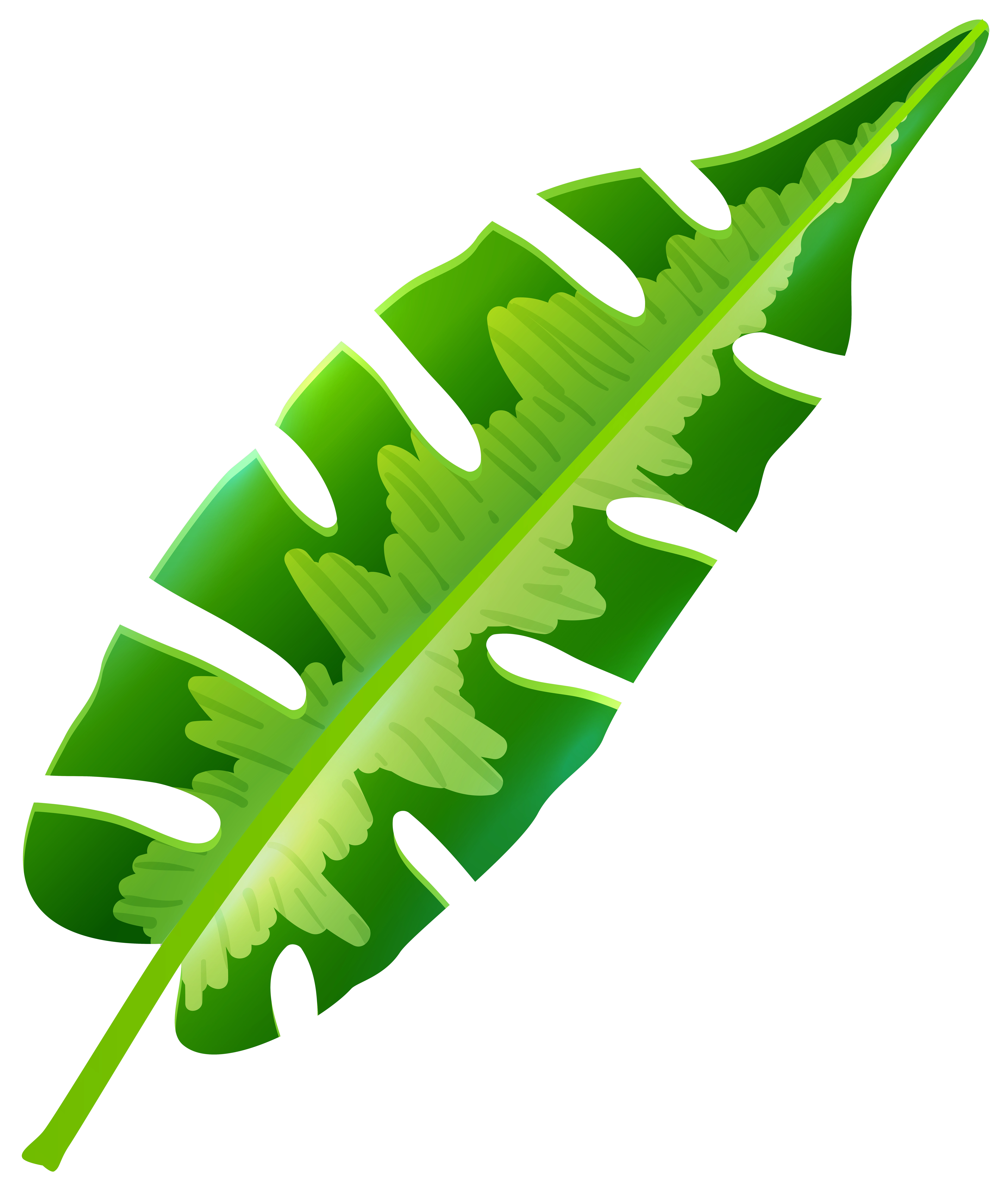 Tropical plant clipart png library stock Tropical Leaf Clip Art | TROPICAL NIGHTS | Tropical leaves ... png library stock