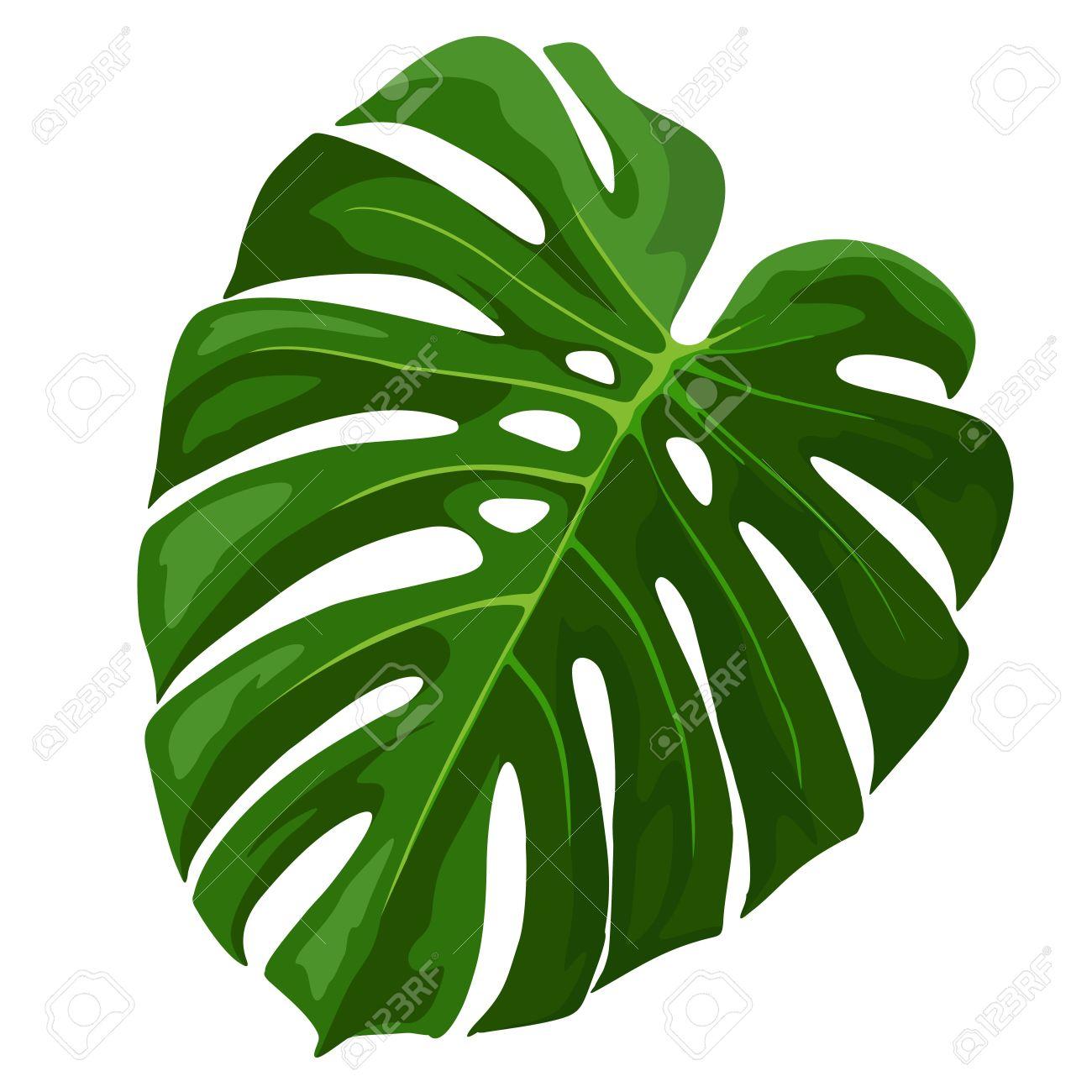 Tropical leaf clipart jpg black and white Tropical Leaves Clipart   Free download best Tropical Leaves ... jpg black and white