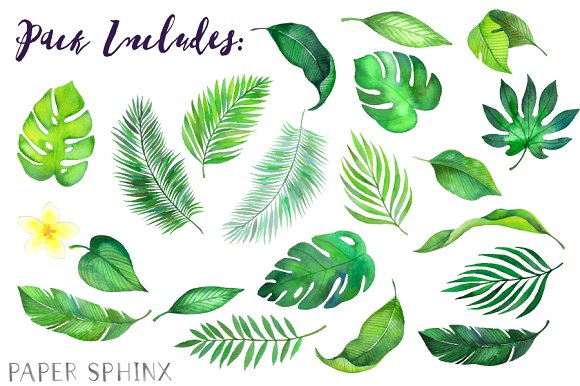Tropical leaf clipart image free stock Watercolor Tropical Leaves Clipart image free stock
