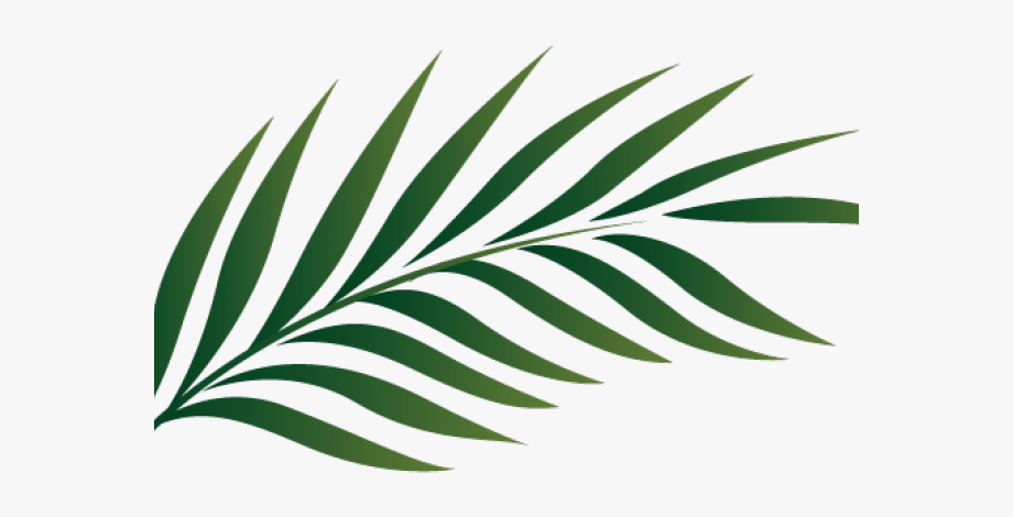 Tropical leaf clipart vector royalty free download Green Leaves Clipart African Leave - Palm Green Leaves Png ... vector royalty free download