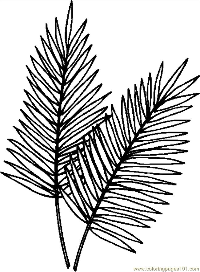 Tropical leaves clipart for coloring picture royalty free library Free Palm Branch Cliparts, Download Free Clip Art, Free Clip ... picture royalty free library