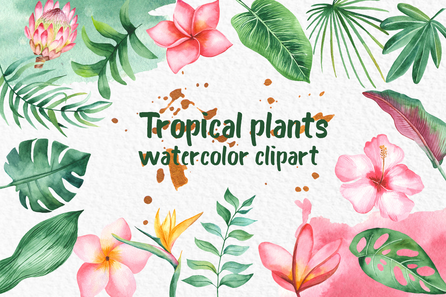 Tropical plant clipart clip free download Tropical plants Watercolor clipart Leaves and flowers clip free download