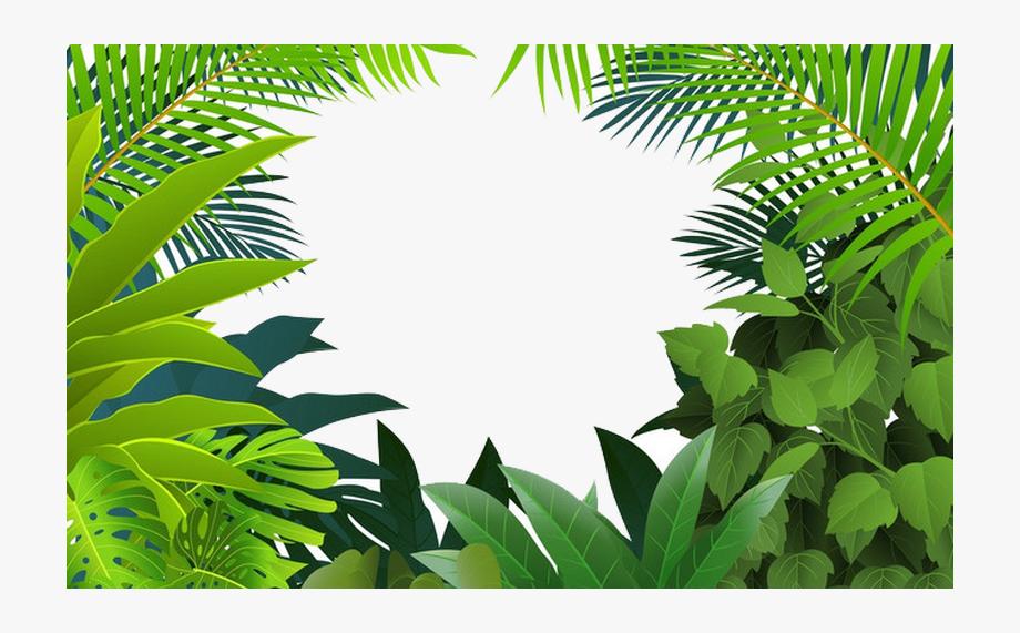 Tropical rainforest clipart clip Rainforest Clipart Palm Tree ~ Frames ~ Illustrations ... clip