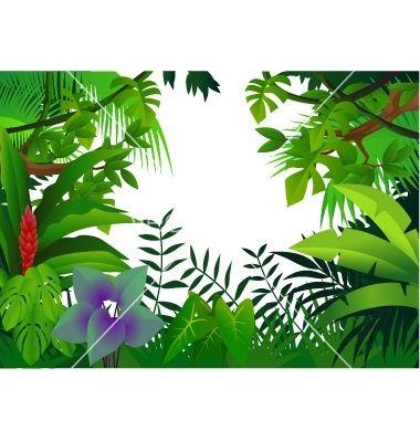 Tropical rainforest clipart clip art library download Tropical Rainforest Animals Drawing   Tropical rain forest ... clip art library download