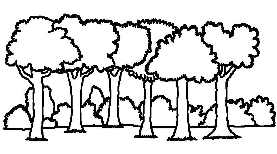Forest Clipart Black And White | Free download best Forest ... clipart black and white stock