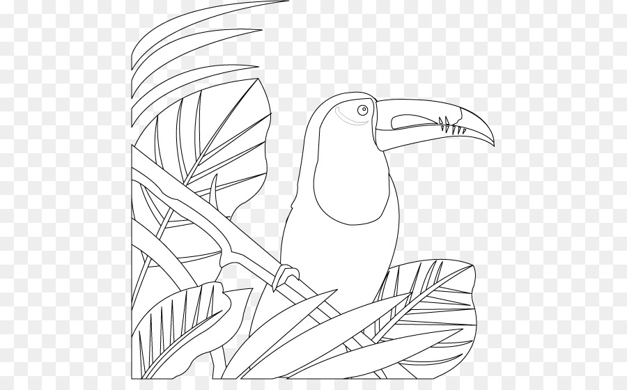 Bird Line Drawing png download - 523*546 - Free Transparent ... graphic royalty free stock