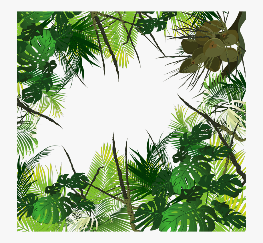 Tropical rainforest clipart clipart free stock Waterfall Clipart Tropical Evergreen Forest - Tropical ... clipart free stock