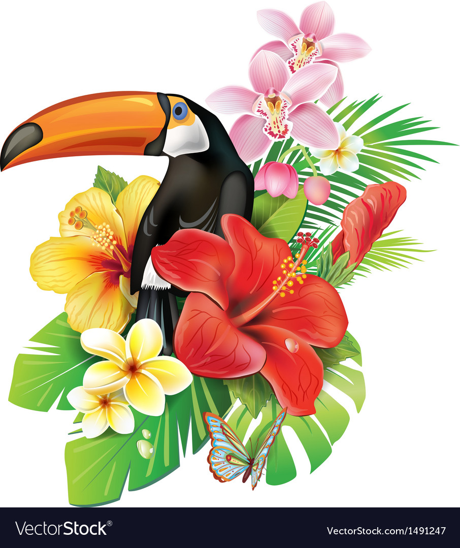Tropical toucan clipart jpg freeuse download Tropical flowers and toucan jpg freeuse download