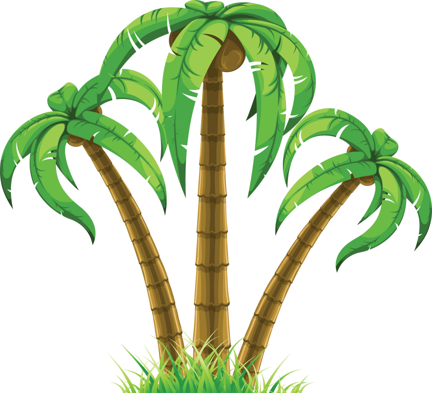 Tropical tree clipart vector freeuse download 28+ Collection of Tropical Tree Clipart | High quality, free ... vector freeuse download