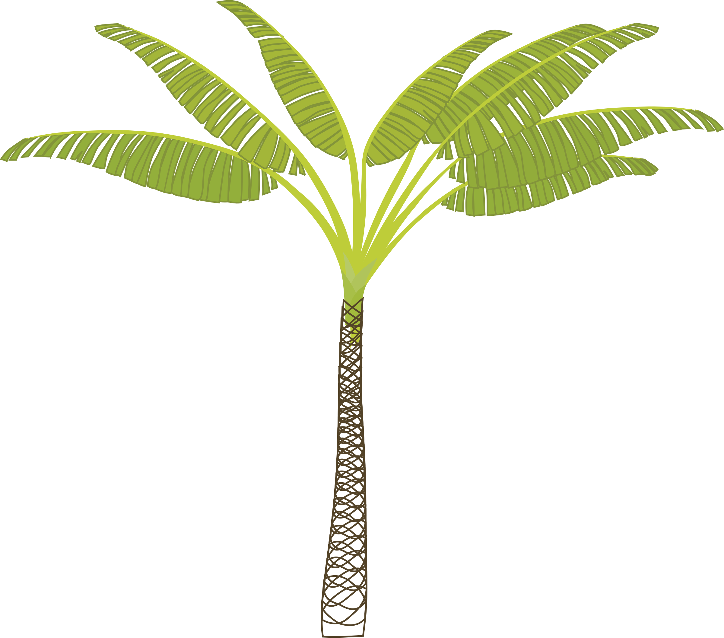 Tropical tree clipart png royalty free download Clipart - palm-tree png royalty free download