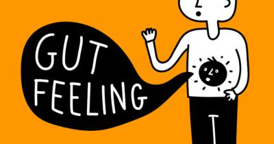 Trust your gut clipart freeuse library Do you trust your gut feeling? - GirlsAskGuys freeuse library