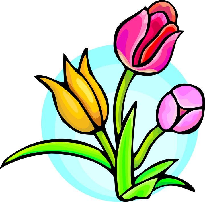 Tu flower clipart image free Spring flower graphics clipart best - Clipartable.com image free