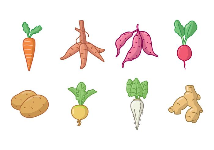 Tuber clipart clip freeuse library Handdrawn Root and Tuber Crops Icon Set - Download Free ... clip freeuse library
