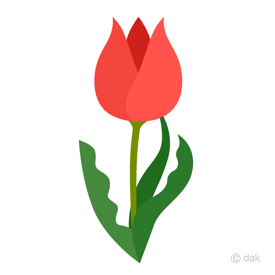 Cute Tulip Clipart Free Picture|Illustoon svg